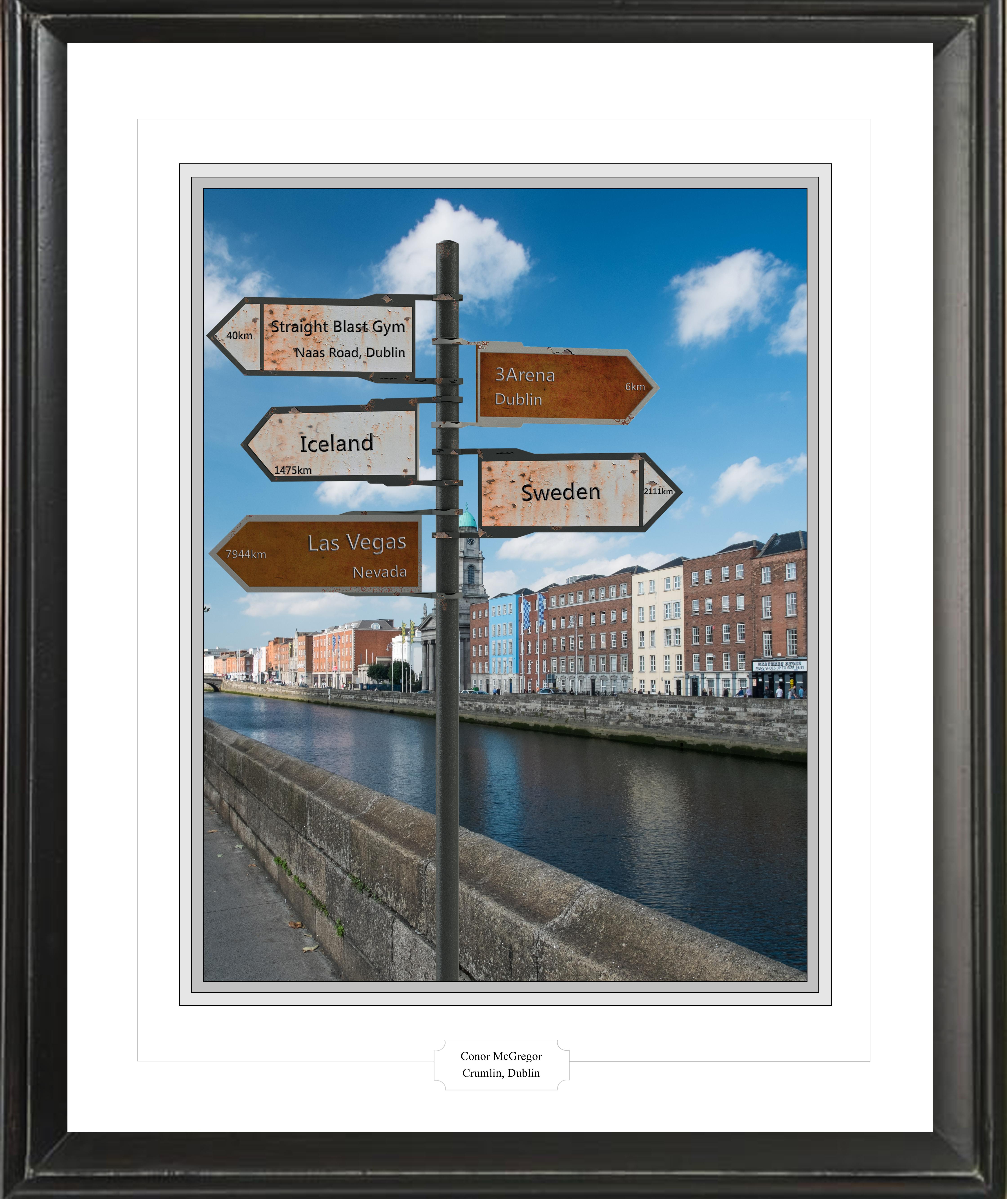Conor McGregor's Irish signpost picture